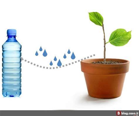 irrigatori per vasi casa immobiliare accessori irrigazione vasi fai da te