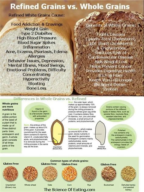 whole grains or refined grains refined grains vs whole grains clean education