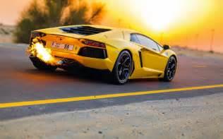 Yellow Lamborghinis Yellow Lamborghini Hd 35094 1680x1050 Px Hdwallsource