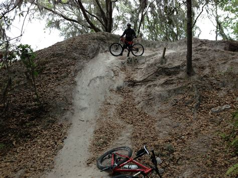 a twisted descent on a option of rollercoast that