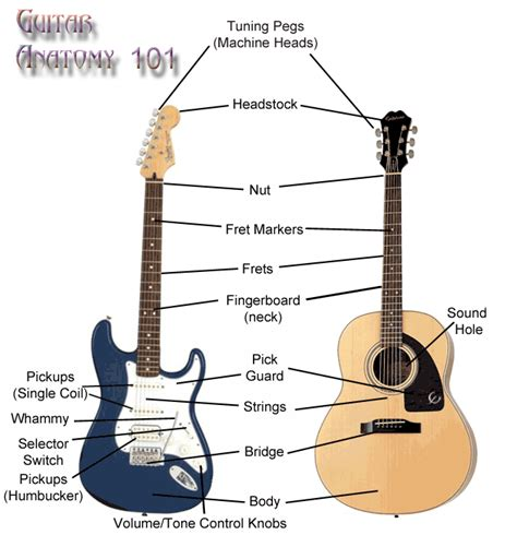 guitar basic tutorial understanding the anatomy of your guitar guitar savvy