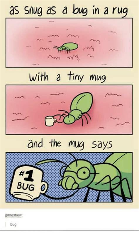 snug as a bug in a rug origin snug as a bug in a rug rugs ideas