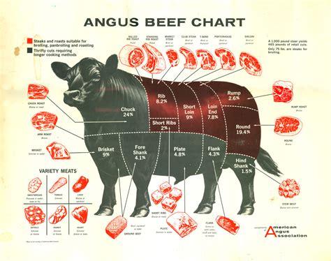 beef butcher diagram beef chart 2d design chart angus beef and
