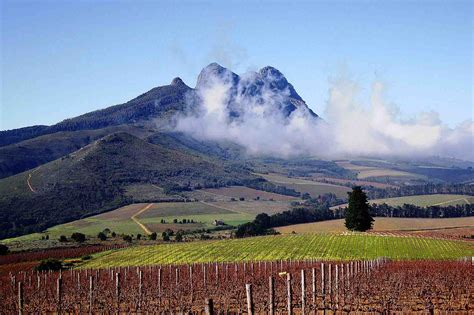 Best Destinations For Wine Tasting   PRE TEND Be curious.