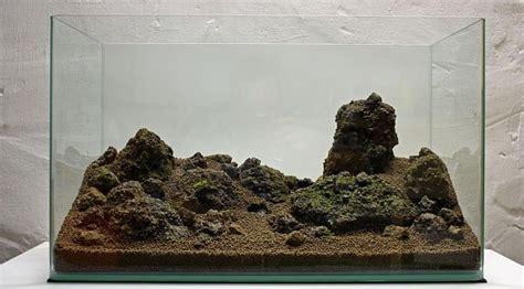 membuat aquascape batu aquascape