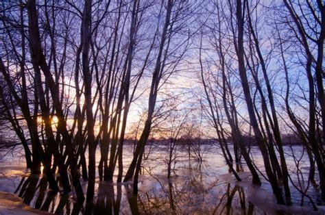 imagenes de paisajes sin editar paisaje oto 241 al con 225 rboles sin hojas descargar fotos gratis