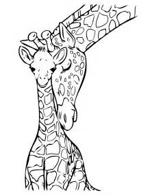 giraffe coloring pages baby giraffe drawing clipart best