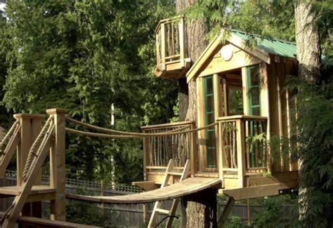 nice tree houses nice tree houses green living eco nature go green