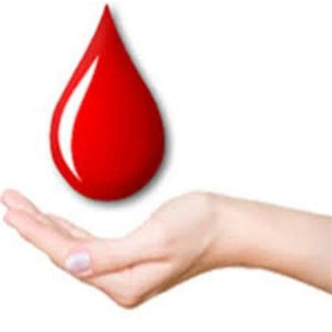mon you bank world blood donor day observed in mon news nelive