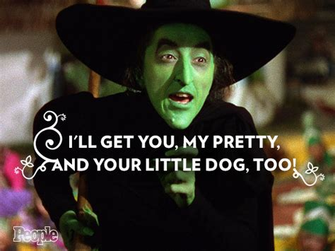 Wizard Of Oz Meme - witch quotes on pinterest