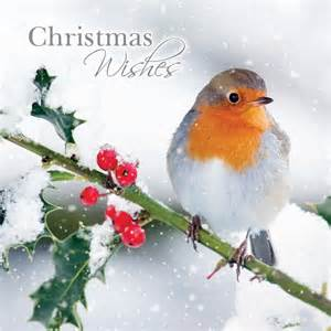 Religious Doormats Charity Christmas Cards Robin Amp Holly Berries Buy
