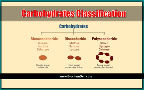 carbohydrates classification carbohydrates classification the basic classification for
