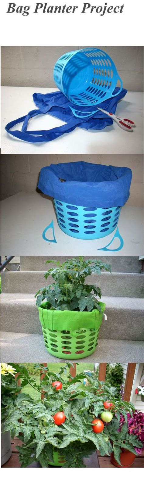 Tomato Planter Ideas by Best 25 Tomato Plants Ideas On Tomato Garden