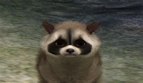 sims  blog      raccoon   pet
