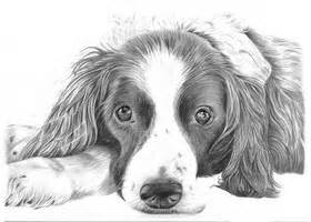 Pencil Drawings For Sale » Ideas Home Design