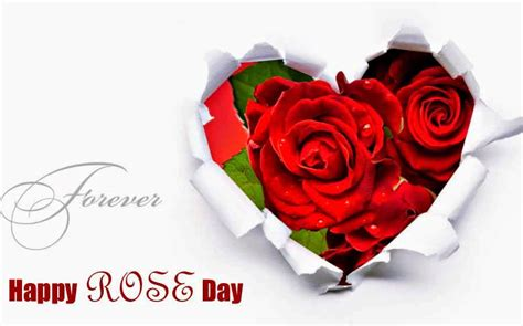 roses on day happy day 2017 whatsapp status dp quotes wishes sms