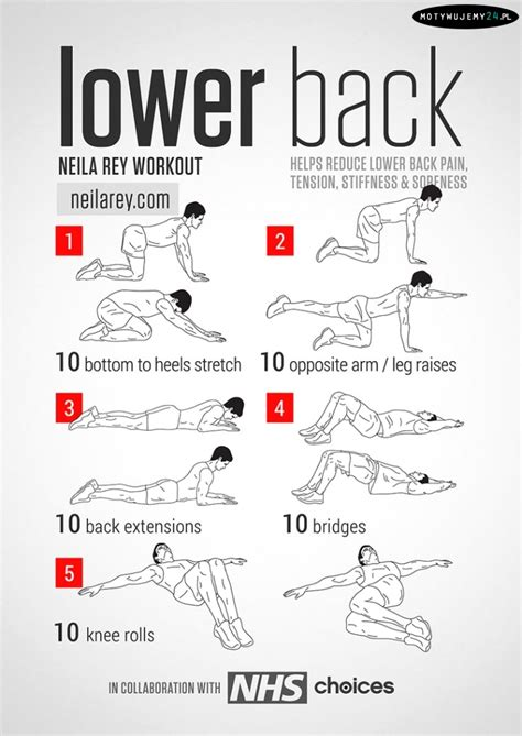 back strengthening exercises lower back strengthening