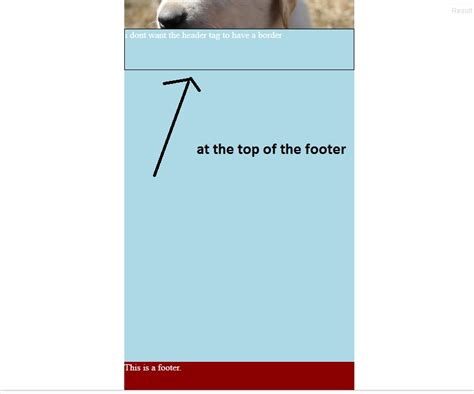 border layout jsfiddle borders only on the content of a full height container