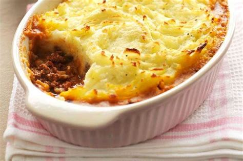 cottage pie gravy 114 best images about blendability on
