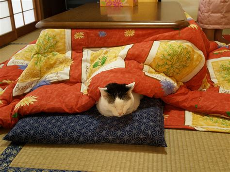 kotatsu bed never leave your bed again with this awesome japanese