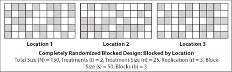block design experiment definition introduction to randomization and layout extension