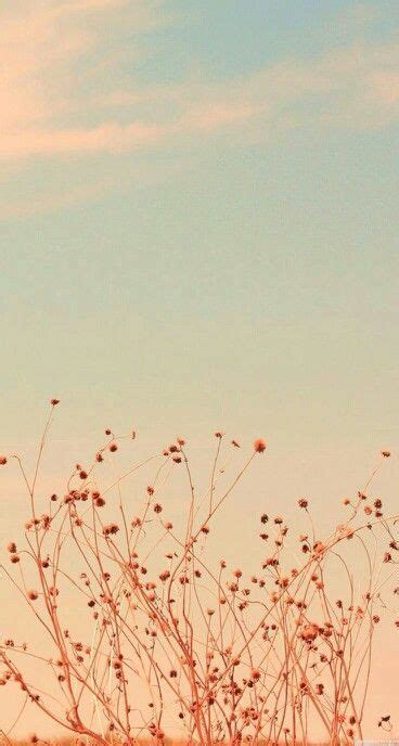 classic wallpaper iphone 5 floral sunset lock home screen wallpapers pinterest