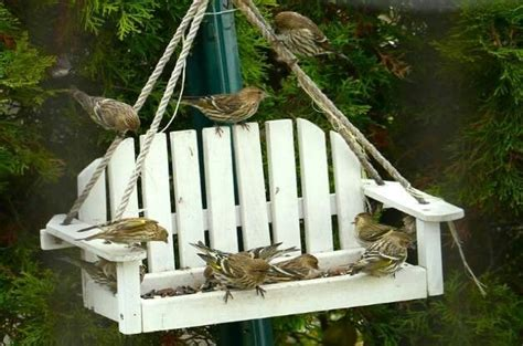 swing bird feeder stuff to try pinterest