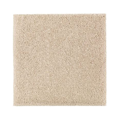 Pet Proof Rugs by Petproof Carpet Sle Gazelle I Color Choice