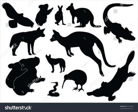 Email Address Finder Australia Australian Animals Silhouette Collection Stock Vector Illustration 20155366