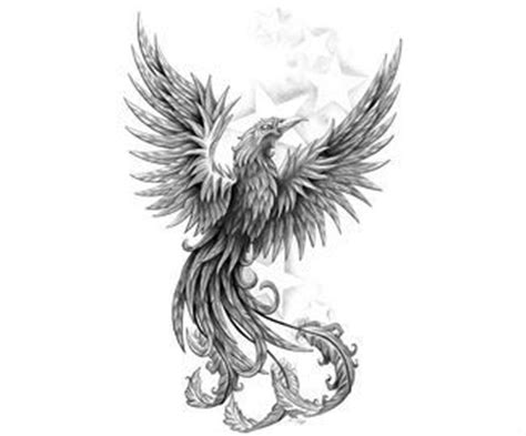 36 best 176 phoenix 176 images on pinterest tattoo designs