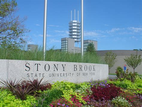 Stonybrook Mba Tuition by Best Practitioner Programs 2016 College Choice