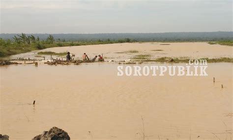 Bibit Bandeng Jawa Timur ton an udang dan ikan bandeng hir panen hilang terseret