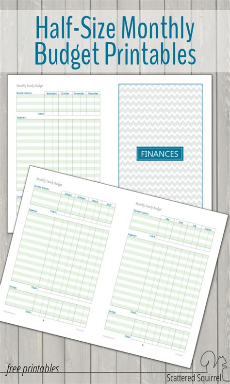 free printable mini budget planner monthly family budget printables