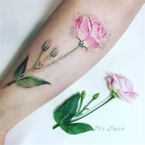 botanical tattoo designs best 25 botanical ideas that you will like on
