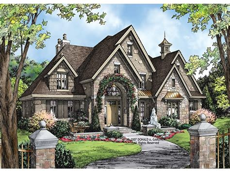 european style home plans luxury home plans