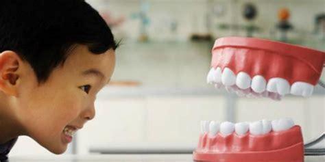 Pasta Gigi Enzim Khusus Behel pasta gigi dengan pemutih ternyata tidak bermanfaat