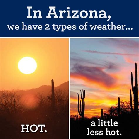 Arizona Heat Meme - my reality can t wait for those 2 weeks of winter lol