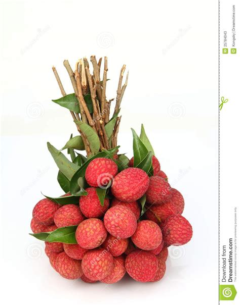 fruit similar to lychee fresh of litchi fruit stock photos image 25784043