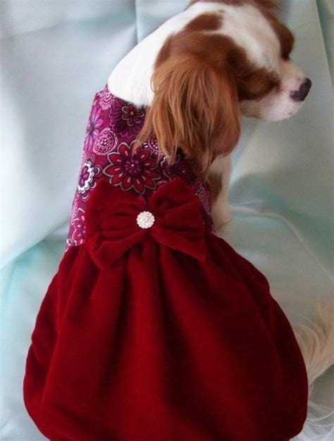 It s adorable red velvet dog dress christmas dresses by miascloset