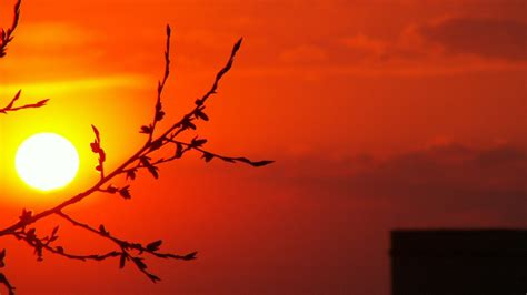 moon  orange background hd orange aesthetic wallpapers
