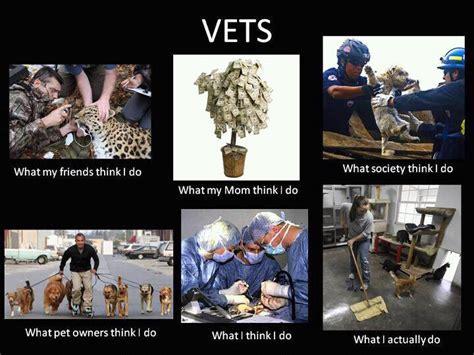 Vet Memes - at vet meme 28 images 25 best vet tech quotes on