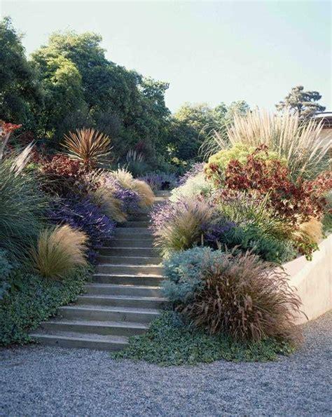 Garten Hohe Pflanzen by Sukkulenten Haus Garten Hang Hohe Stauden Winterharte