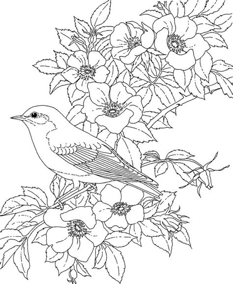 Coloring Pages Of Birds And Flowers | adult coloring pages printable free free printable