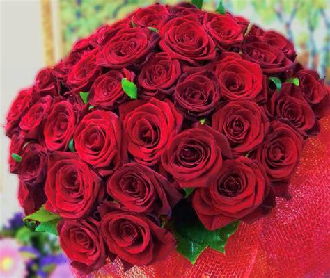 Order Roses by миллион роз купить розы красивые крупный бутон 61 руб