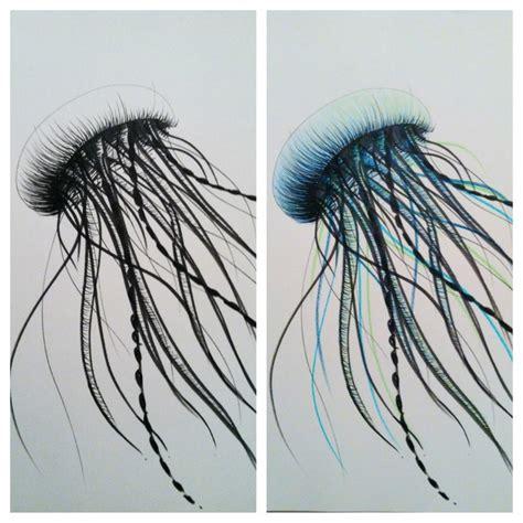 Drawing Jellyfish by Jellyfish Drawing Randoms Jellyfish