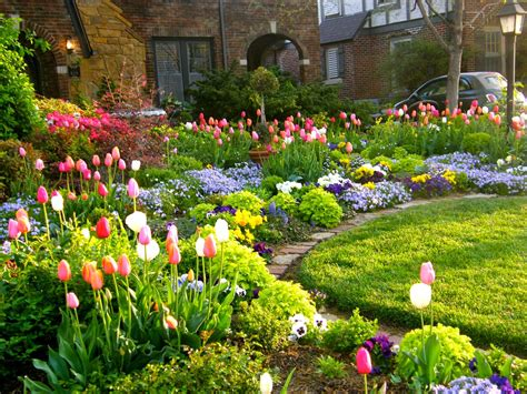 spring gardens tulip season front yard garden curb appeal flowers