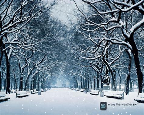 imagenes de paisajes invernales 66 im 225 genes de feliz invierno y bienvenido invierno e