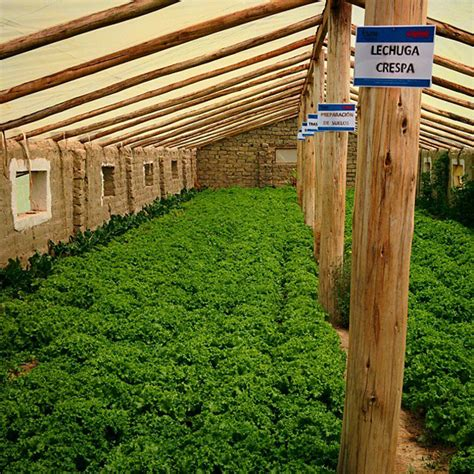 design your own underground home interested in building your own underground greenhouse