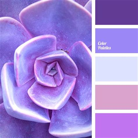 53 best images about color color paletttes net on paint colors paint palettes and