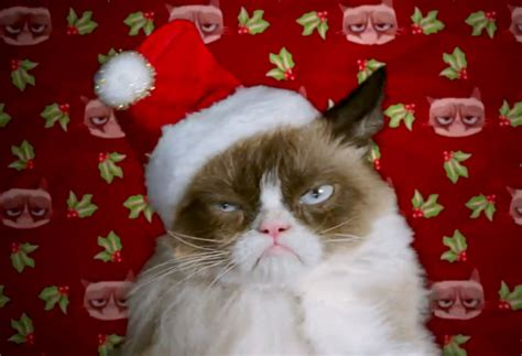 Merry Christmas Cat Meme - breaking down lifetime s grumpy cat s worst christmas ever